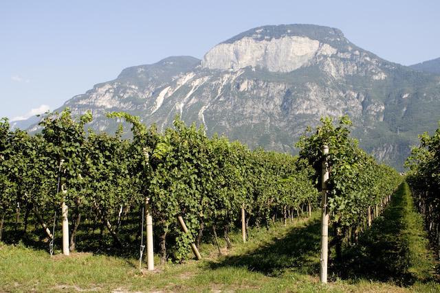 Castelfeder_Dolomites