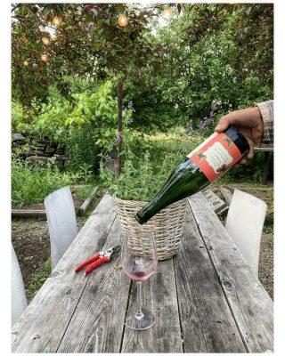 Vermont Wine